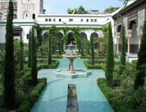 Des idées pour faire une visite guidée à Paris cet été